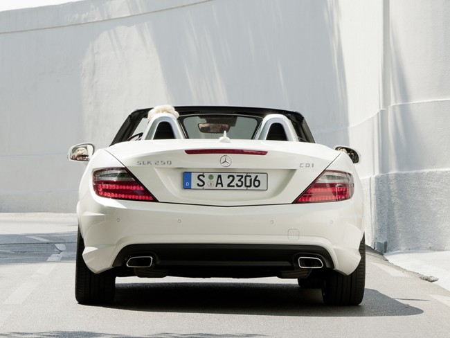More Mercedes Benz SLK250 CDI Wallpapers.